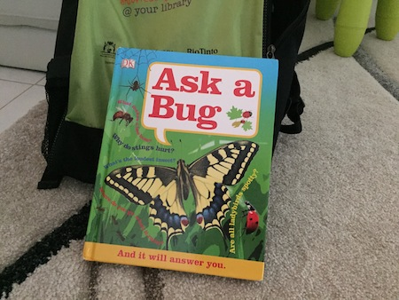 Ask A Bug